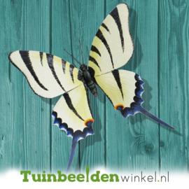 Metalen vlinder ''Grote metalen vlinder 2'' TBW0871pr74