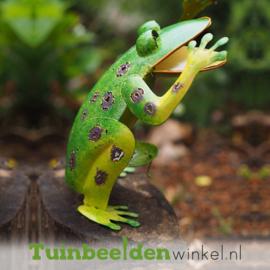 "Tuindecoratie kikker ""De pratende kikker "" TBW16042me"
