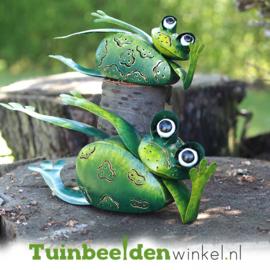 Dieren tuinbeelden ''De twee chillende kikkers'' TBW16115-16