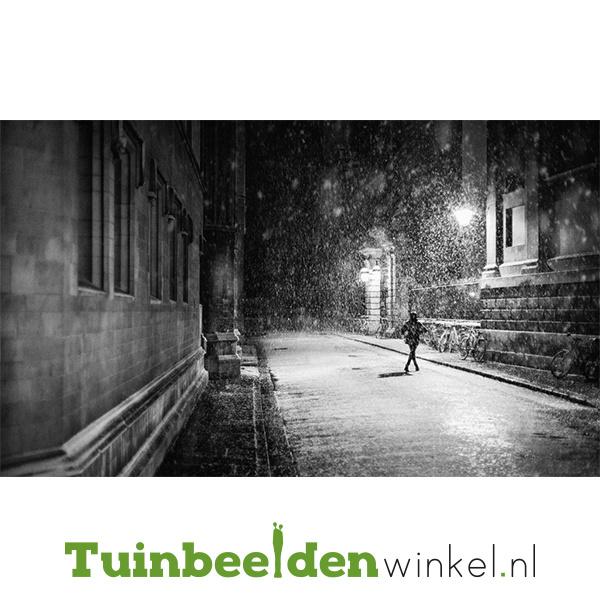 "Schilderij van RVS ""Koude winteravond"" TBW025sc"