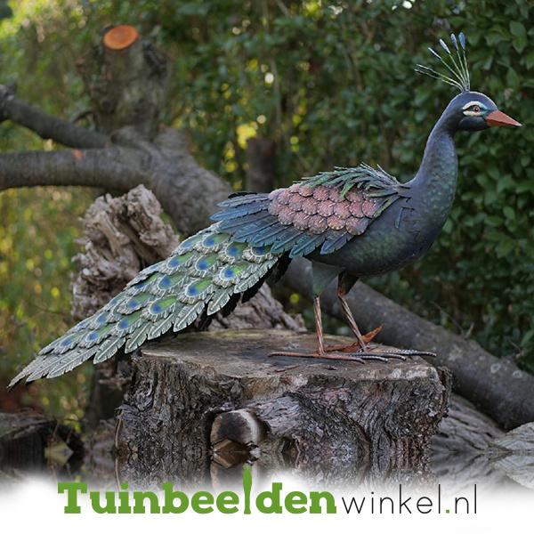 Metalen tuinbeeld figuur ''De trotse pauw'' TBW18213