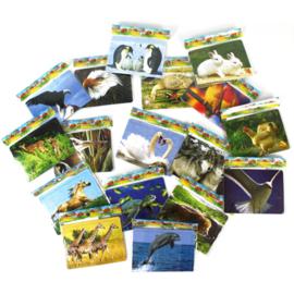 9 stuks verschillende dieren puzzeltjes karton 12x8,5 cm