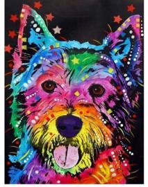 Diamond Painting hobbypakket kleurrijke hond 20x30 cm