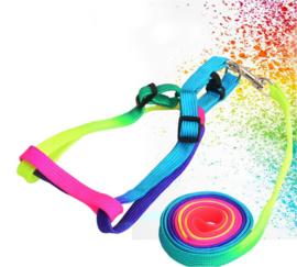 Kleurrijke regenboog tuigje + riem 120cm nylon voor kleine hond of kat
