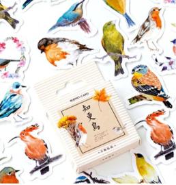 40 stuks scrapbooking stickers vogels 4x4cm