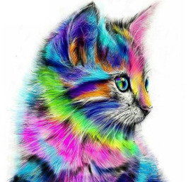 Diamond Painting multicolor kitten 30x30 cm