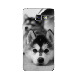 Soft case / hoesje Malamute puppy Galaxy A3 2016