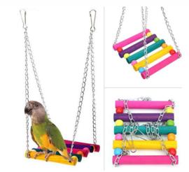 Gekleurde schommel hout voor parkieten en kleine papegaaien
