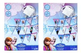 2 stuks complete pakketjes Maak je eigen Frozen vlaggenlijn