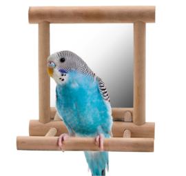 Spiegeltje met zitstok voor parkieten - vogels