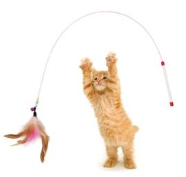 Kattenspeelgoed veren + belletje - korte houder