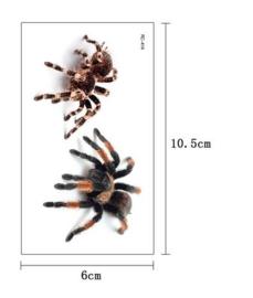 Tijdelijke tattoo enge spinnen