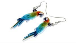 Oorbellen papegaai / ara