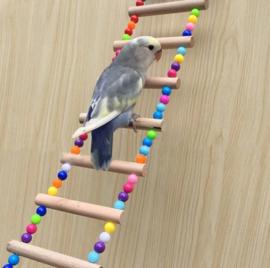 Houten vogel trap - parkieten - kleine papegaaien 37 cm lang