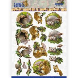 CD11649 3D vel A4 - Forest Animals - Amy Design