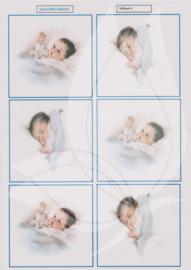 JDV003 Vellum vel A4 - Baby - Jellie Design
