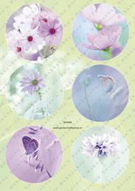 GH3369 Vintage vel - Cirkels Bloemen en Vlinders - Gerda's Hobbyshop