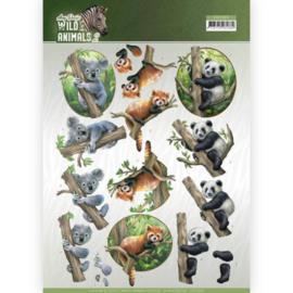 CD11300 3D knipvel A4 - Wild Animals - Amy Design