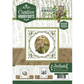 CH10006 Creative Hobbydots - Amazing Owls - Amy Design