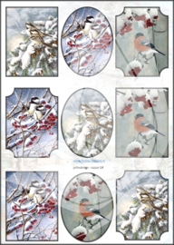 JDNA024 A4 vel Najaar - Vogels Winter - Jellie Design