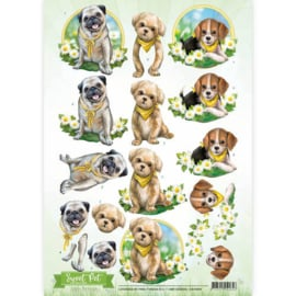 CD10960 Knipvel A4 - Sweet Pets - Amy Design