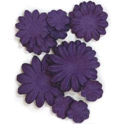 F613 Paper Flowers 2cm, 3.5cm & 5cm - 60stuks - Violet - Kaisercraft