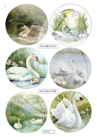 JDN018  Vintage vel A4 Natuur - Jellie Design