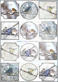 JDNA023 A4 vel Najaar - Vogels - Jellie Design