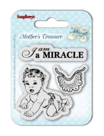 SCB4907024 Clearstempel - ScrapBerry's