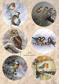 GH3362 Vintage vel - Cirkels  Vogels - Gerda's Hobbyshop