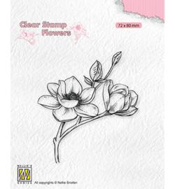 FLO028 - Blooming branch magnolia - Nellie Snellen
