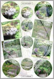 JLENTE016 Jellie vel A4 Lente