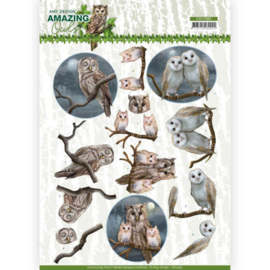 CD11563 3D Knipvel A4 - Amazing Owls - Amy Design