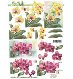 8215.776 3d vel A4 - Bloemen Orchidee -  Le Suh