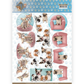 CD11366 3D vel A4 - Dog's Life - Amy Design