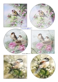JD019 Vintage vel A4 Vogels - Jellie Design