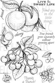 SS075 Perzik, Kersen en tekstjes Clearstempel - Flourish