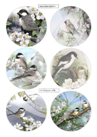 JD048 Vintage vel A4 Vogels - Jellie Design