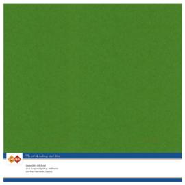 60 Fern Groen - Linnen Kaarten 30,5 x 30,5cm - 10 stuks - 200 grams - Card Deco - PAKKETPOST!!