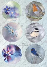GH3381 Vintage vel - Cirkels Vogels/Bloemen - Gerda's Hobbyshop