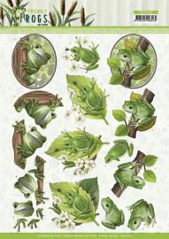 CD11620 3D Knipvel A4  - Friendly Frogs - Amy Design