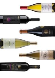 Proefbundel Wijn van de oorsprong III