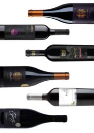 Proefbundel Wijn van de oorsprong I