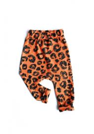 Broekje - 'Leopard!'