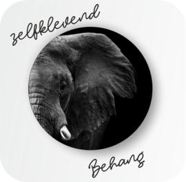 Zelf klevend behang |  Olifant