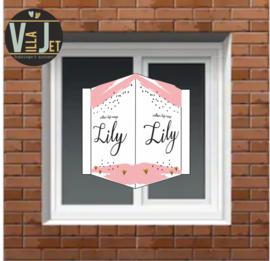 Raambord geboorte | verf streep  Lily