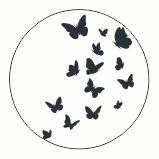 Muurdots | Vlinders