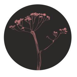 Muurcirkel | Berenklauw vintage roze en zwart