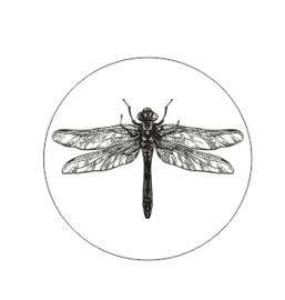Muurdots | Libelle | zwart wit