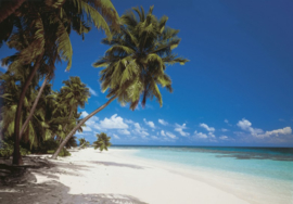 Maldives 8-240 Komar